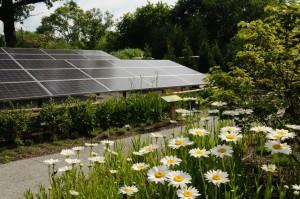 solar panels GGG
